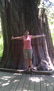 Author in front of a 1000 year old cedar.